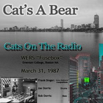 Cats On The Radio